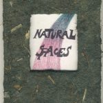 Natural Spaces - 1995, 7 3/4 x 5 inches, edition of 2. Color laser printed color drawings of abstracted spaces covered in Bird's Nest paper.